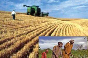 Centralità dell'agricoltura nella riconversione ecologica dell'economia